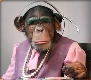 receptionist_monkey